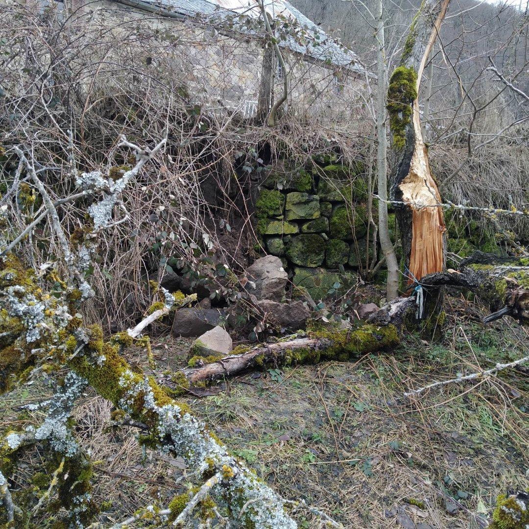 mur affaissé en bas du potager